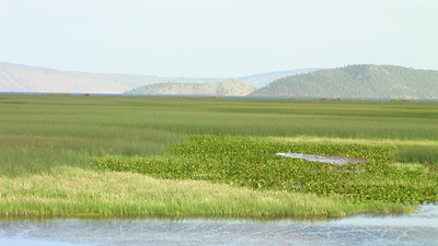 Klamath National Wildlife Refuge